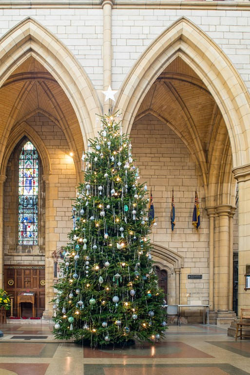 Christmas Tree in Truro Cathedral