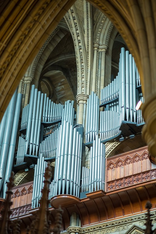 Looking up at the organ pipes of the Father Willis organ at Truro Cathedral