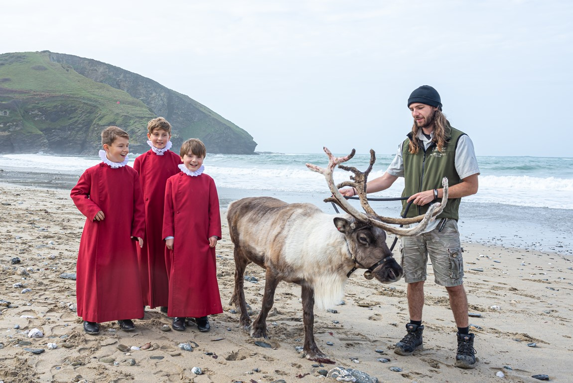 Choristers of Truro Cathedral Choir standing with a reindeer on Portreath beach